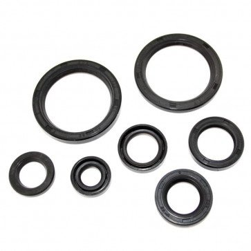 BSA Oil Seal Kit BSA for B25, C25, B44 (1967 - 1972),B50 (1971 - 1972).